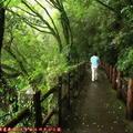 (530)宮崎-關之尾公園步道