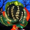 (185)多元交流燈區-香港燈區「文學樹」