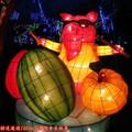 (193)新桃樂農燈區-彩虹樂團