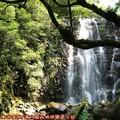(108)滿月圓森林遊樂區-處女瀑布
