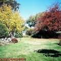 (003)墨爾本-薰衣草農莊