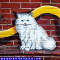(02)雲林頂溪社區-屋頂上的貓