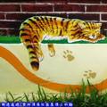 (03)雲林頂溪社區-屋頂上的貓