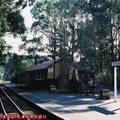 (253)墨爾本-丹頓農區古董蒸汽火車月台