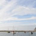 在Morro Bay 不期而遇海獺家族