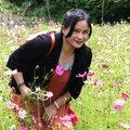 安詳美麗的人間境土~台北後花園八煙聚落