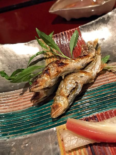 琵琶湖幼香魚