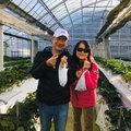 筑紫野草莓農園