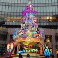 2019聖誕樹集錦