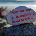 紐西蘭南島 Westcoast 特殊景觀