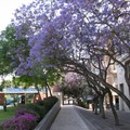 Malaga空中花園