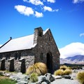 所有一切和紐西蘭風土民情相關的照片