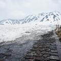 在日本的個人小旅行。 雪真是太溫柔又太溫暖了。
