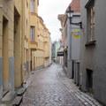中世紀波羅的海日耳曼人( Baltic Germans)居集的老塔林(Tallinn)下城街道_12_Jul_2015