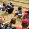 大智慧NEWS ~ 2019.3.10 地球有機會健康 第一梯次 活動 - 11