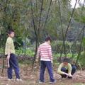 1020216 阿嬤菜園