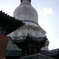 寺內以舍利塔為主,塔基座正方形,藏式,總高約60米,全部用米漿攔和石灰砌築而成,在青山綠叢之中,高聳的白塔格外醒目。五台山的標誌