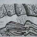 雙石護花 - 3