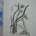 蘭花 - 1