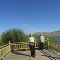 """可可蘇里湖水碧藍澄清,水生動植物豐富。夏秋季節,大量红雁、白天鹅、灰鹤、沙鵝、野鸭等在此繁衍生息。秋季20多座蘆葦岛随風飄遊,野鸭嬉戲玩耍。遠處肥沃草原一望無際,牛羊成群,悠閒覓食湖邊,恬静安逸。白雲、青山以及繁盛秀美的可可苏里,共繪一幅意濃淡抹的中國山水畫,一派""""草原澤國""""的迷人美景,是踏青蜜春、垂钓赏景、攝影寫生的绝佳去處。"""